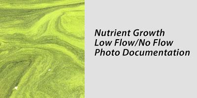 Nutrient Growth Low Flow/No Flow Photo Documentation
